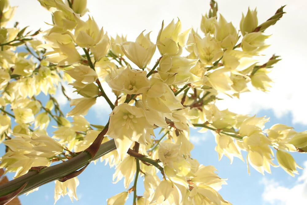 My Flower by kirtusmiller