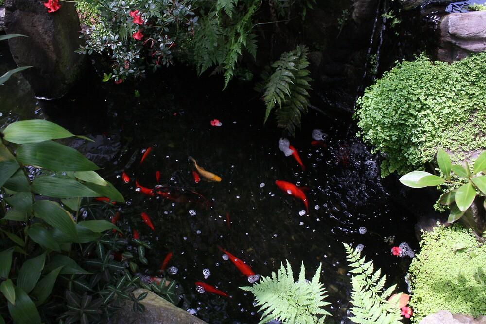 pond by kirtusmiller