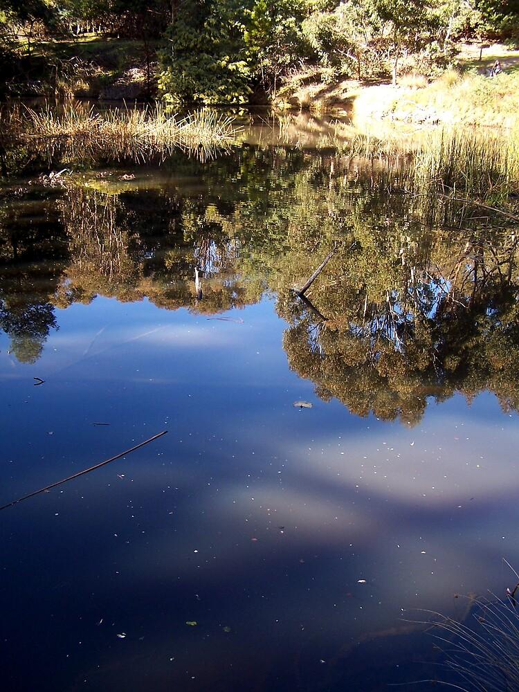 reflections by Princessbren2006
