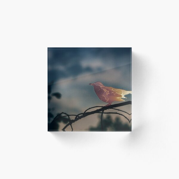 Bird warp out Acrylic Block