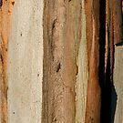Tree Textures by MagnusAgren