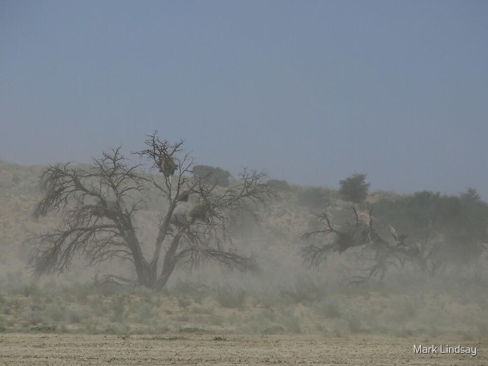 Dust of the desert by Mark Lindsay