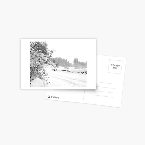 k66 Postcard