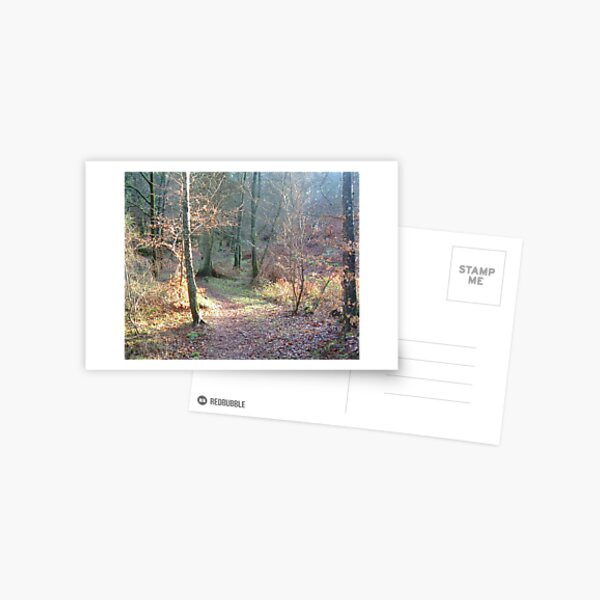 k61 Postcard