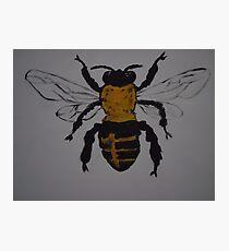 JUST-BEE Photographic Print