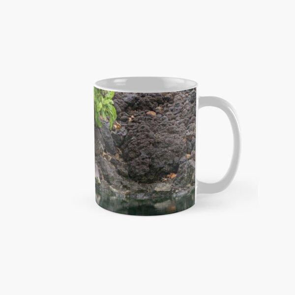 Sheltered Classic Mug
