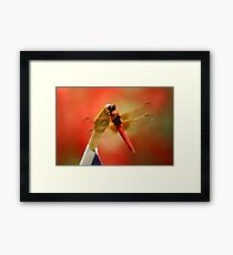 Red Patriot Framed Print