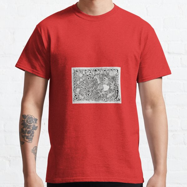 Donkey surprise Classic T-Shirt