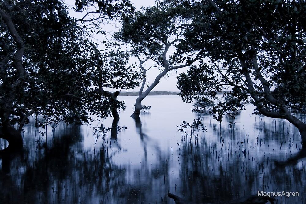 Wetlands by MagnusAgren