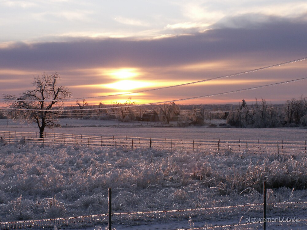 ice storm 2007 3 by pictureman65622