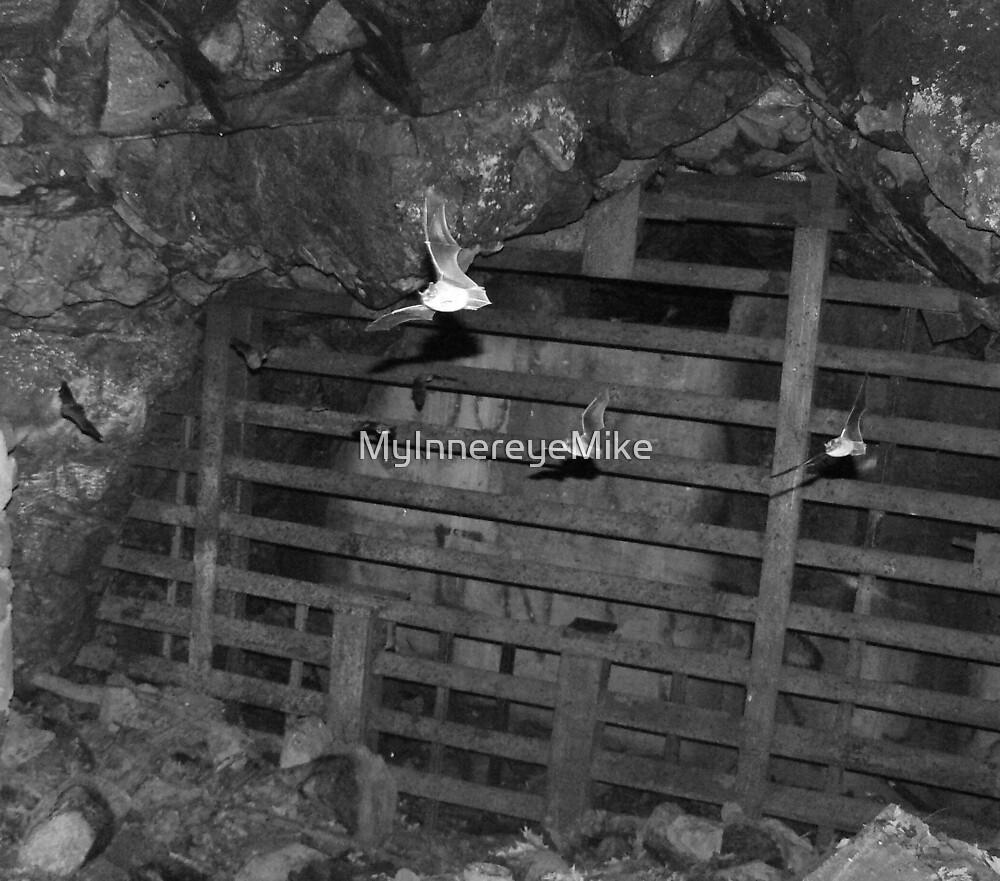 #31  Bat Cave by MyInnereyeMike