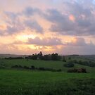 byron hills by sunset