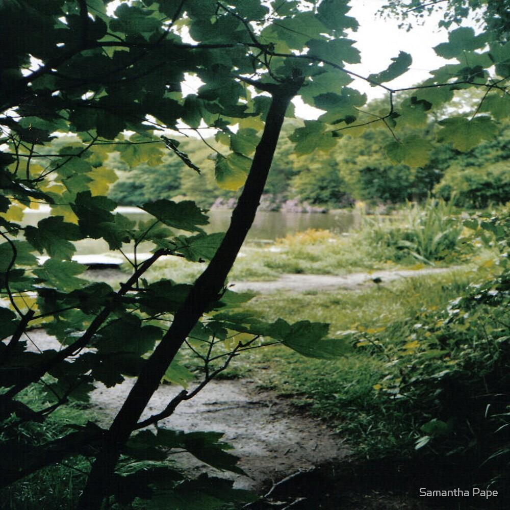 Lakeside by Samantha Pape