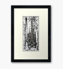 South Carolina Forest Framed Print