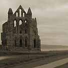 Whitby Abbey Overlooking Bay by shane22