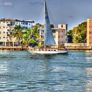 Out for a Sail by photorolandi