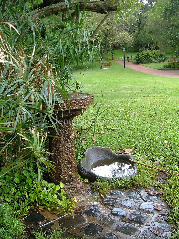 Bird Bath by Jennifer Standing