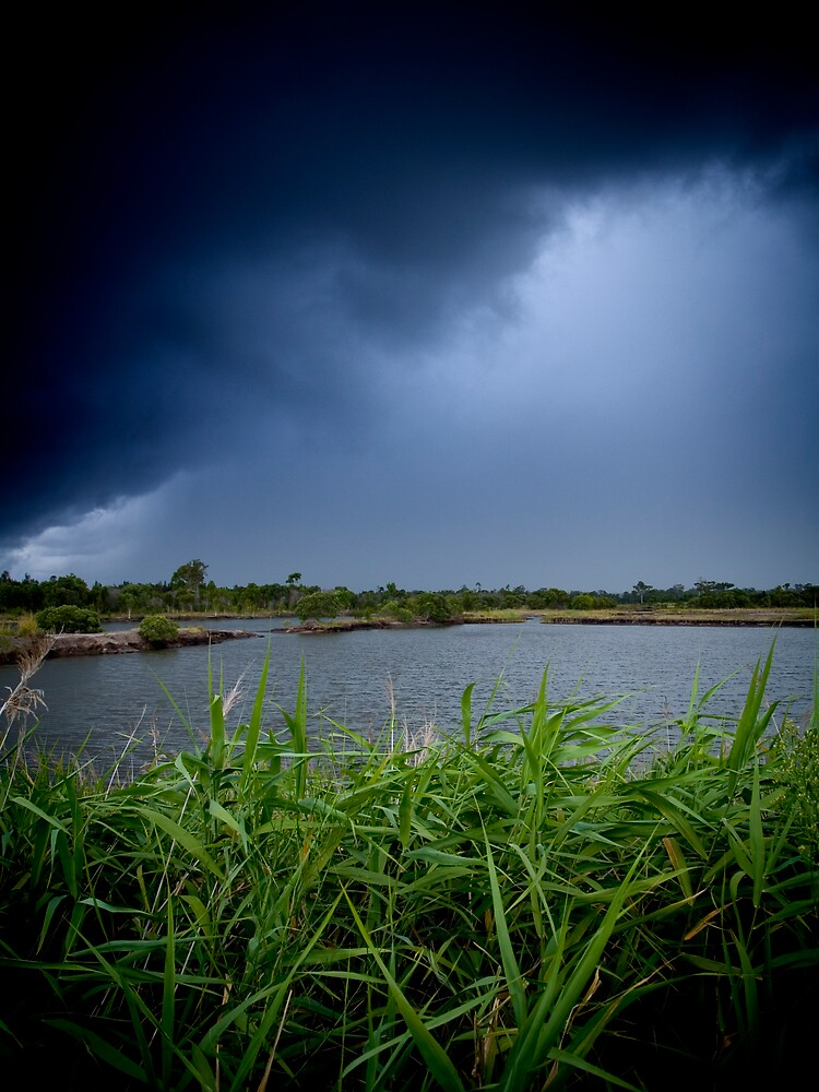 A storm with grass by Mark Braham