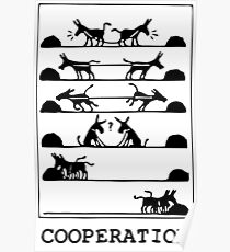 What Is Cooperation? Poster