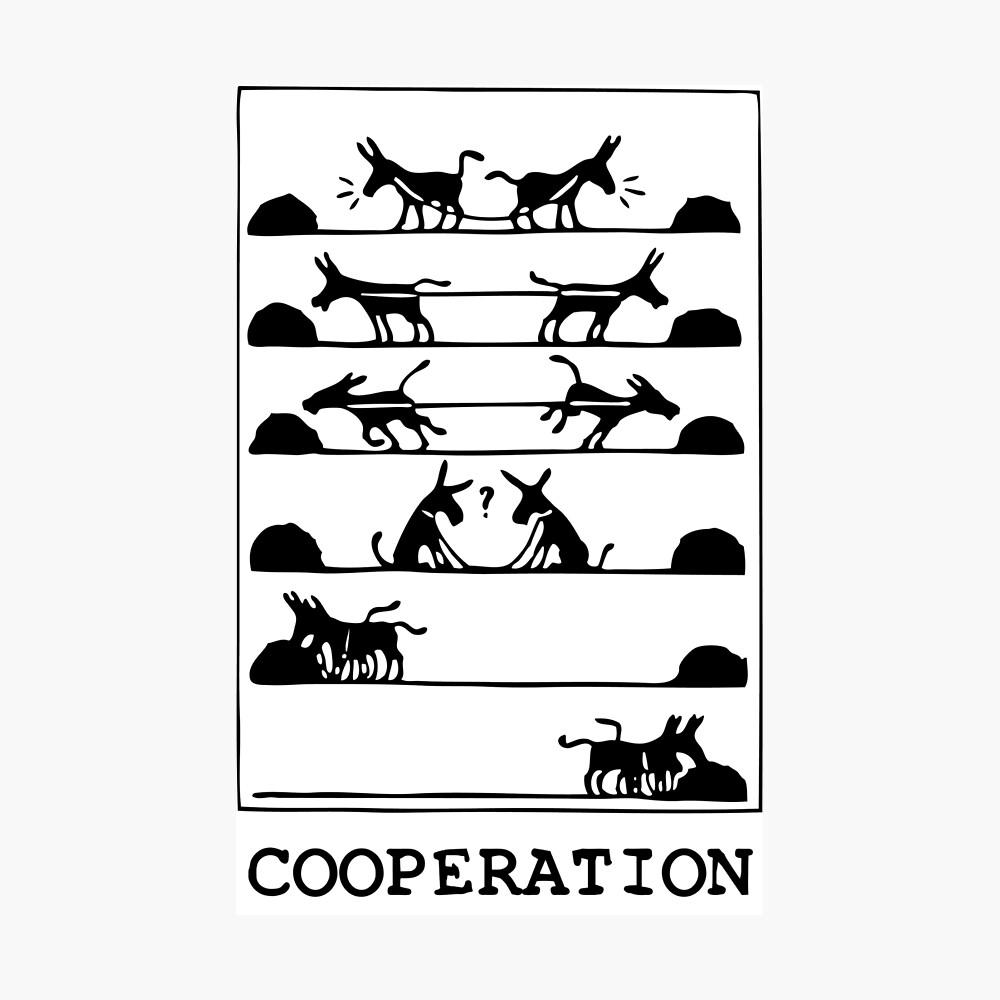 ¿Qué es la cooperación? Lámina fotográfica