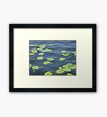 water with greenery Framed Print