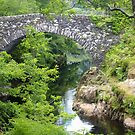 Bridge on River Shiel, Scotland by Marilyn Harris