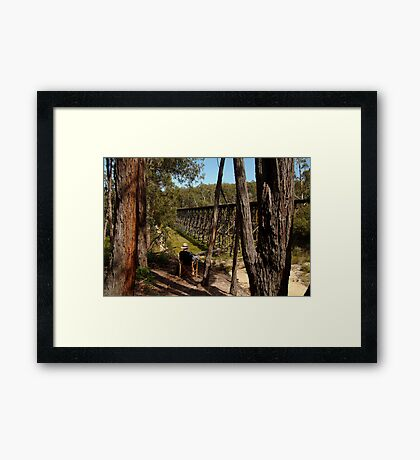 Trestle Bridge Colquhoun State Forest Framed Print