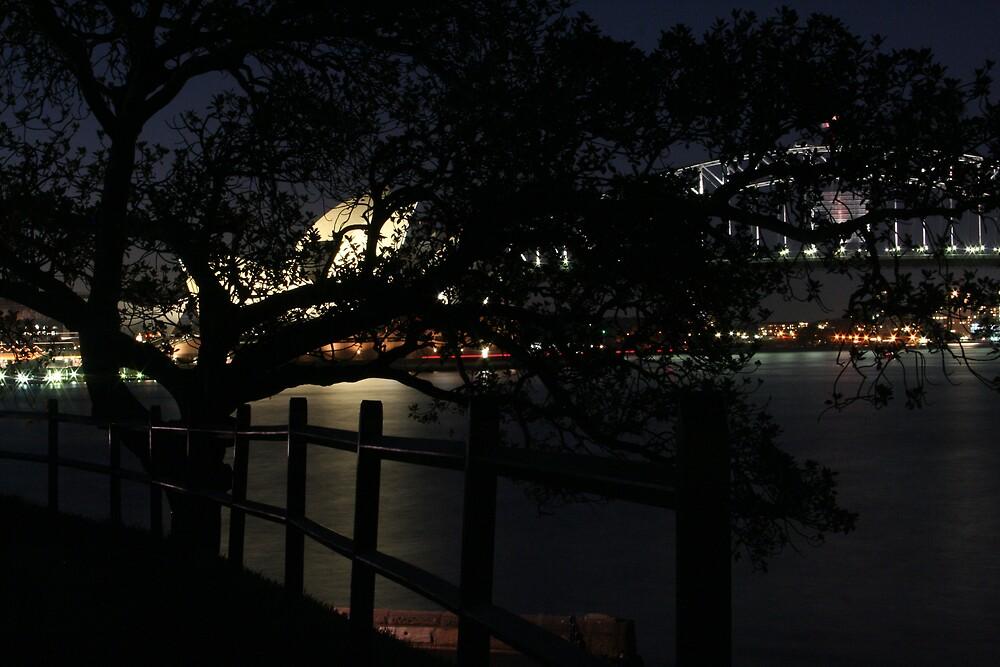 Sydney by Night by Bronwyn  Murphy