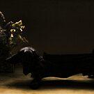 DACHSUND BOOT SCRAPER PHOTOGRAPH  by scarletjames
