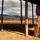 Hay Shed,Eversley, Mt Cole State Park by Joe Mortelliti