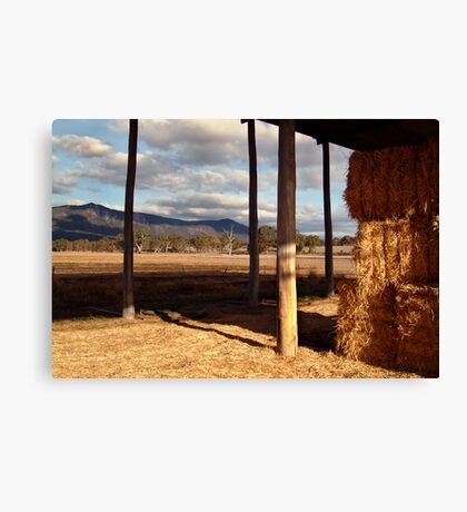Hay Shed,Eversley, Mt Cole State Park Canvas Print