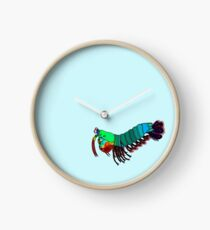 Peacock Mantis Shrimp Clock