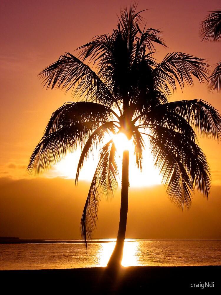 Sunset in Paradise by craigNdi