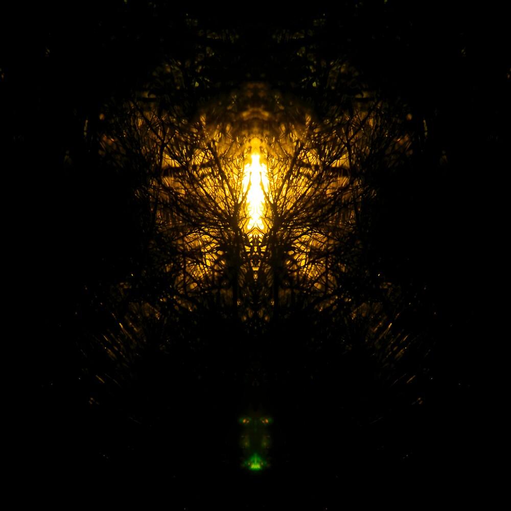 Angel Light by Elias