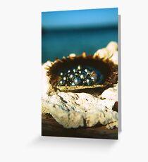 Abrolhos Islands Greeting Card
