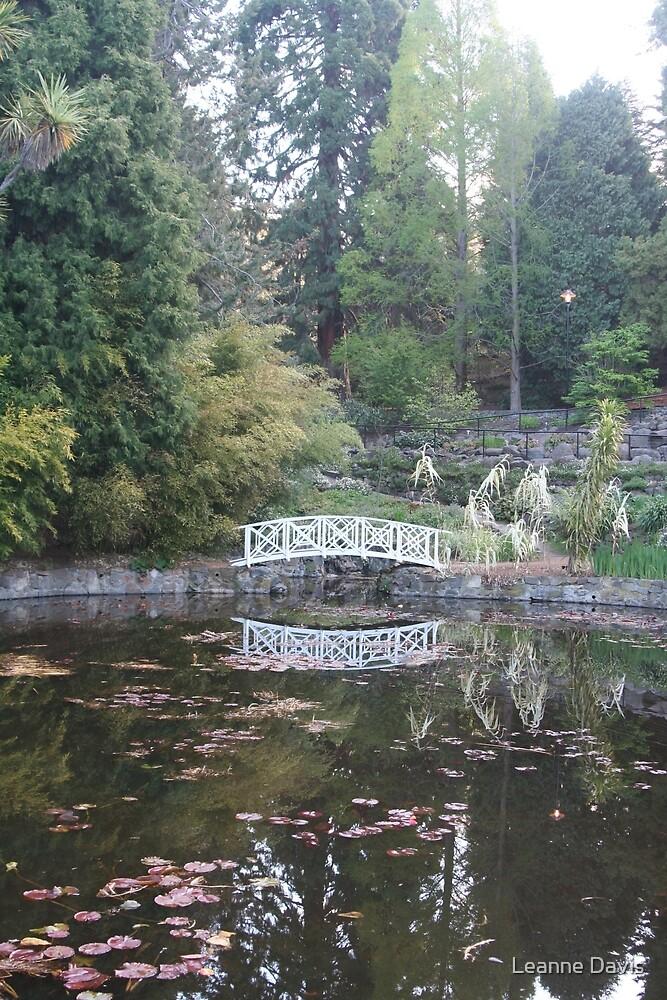 Lakeside reflections by Leanne Davis