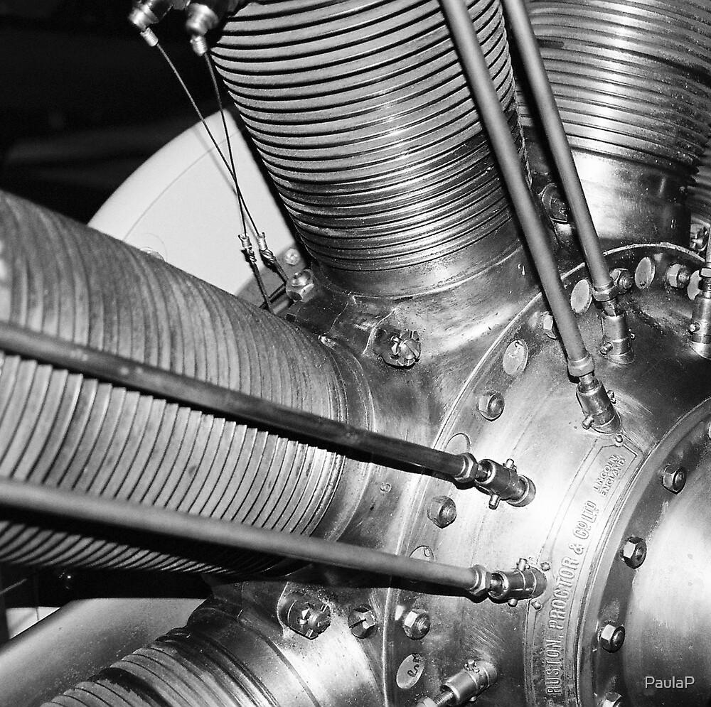 Engine closeup by PaulaP