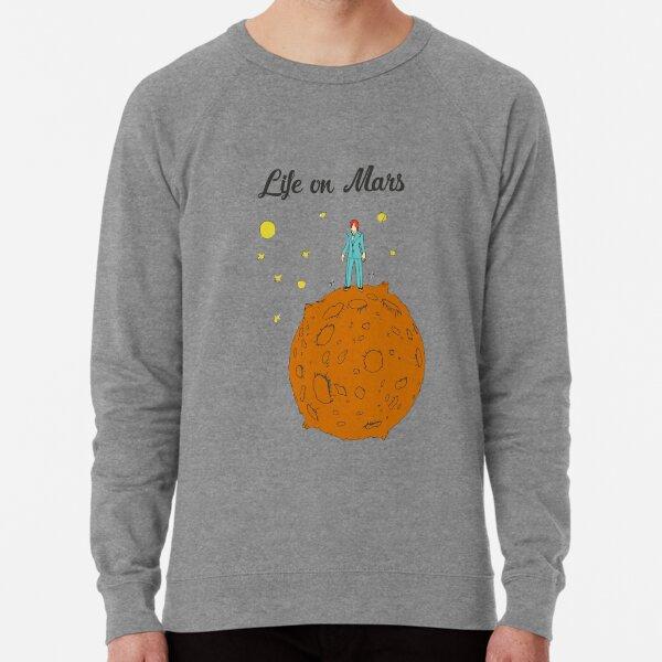 Leben auf dem Mars Leichter Pullover