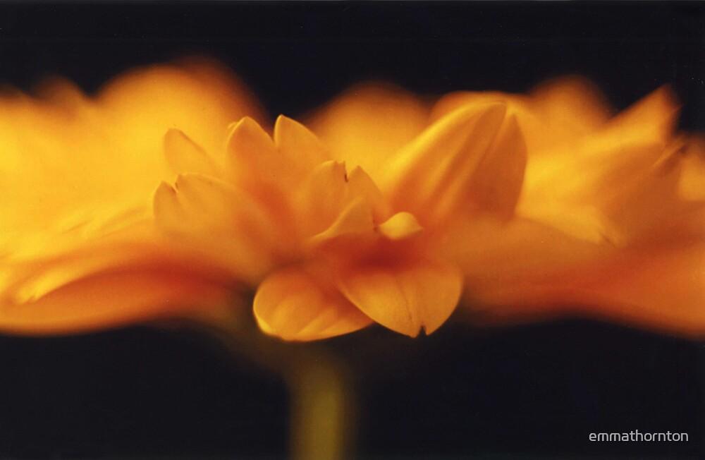 Yellow Horizon by emmathornton