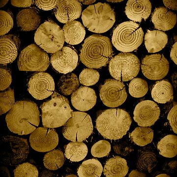 Logs by dopeytree