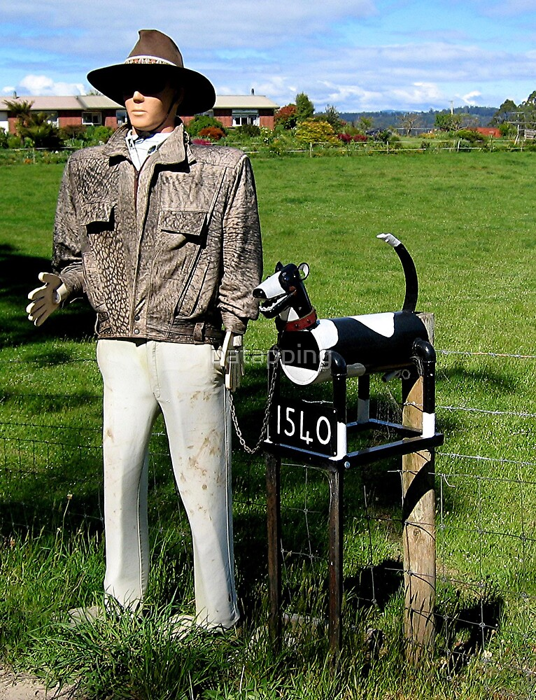 Man and his Dog letter Box, Wilmot, Tasmania by patapping