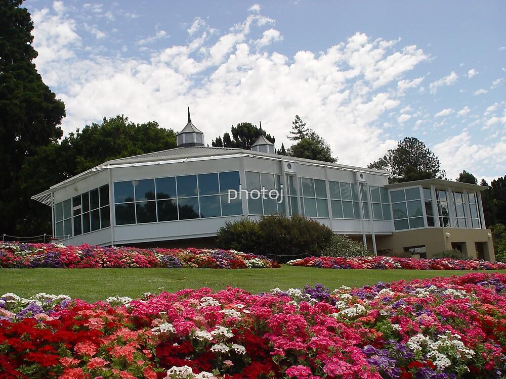 photoj Tasmania Hobart B Gardens by photoj