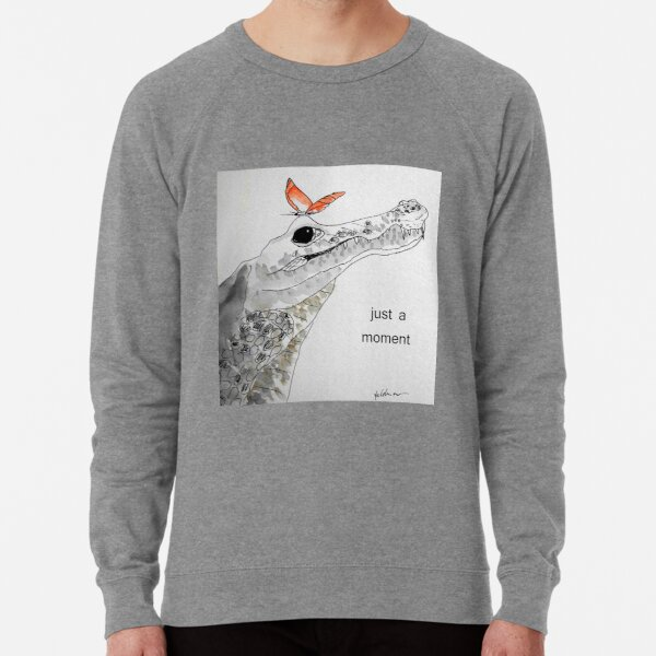 crocodile - just a moment Leichter Pullover