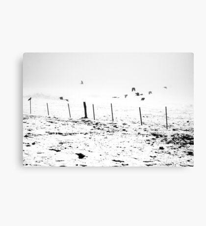 The Birds Canvas Print