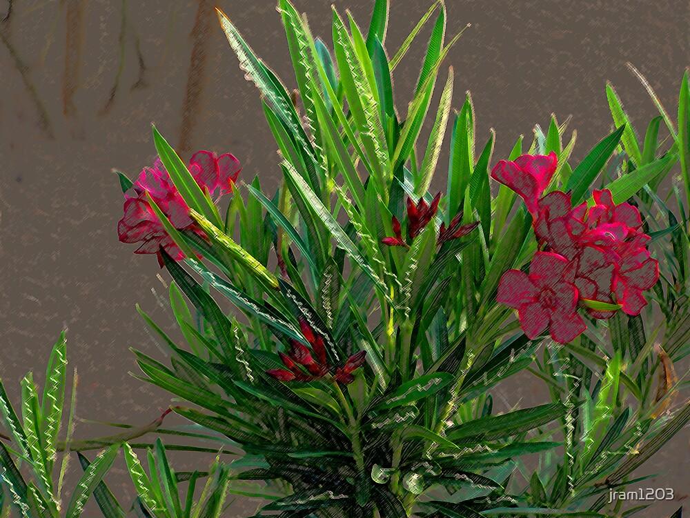 desert flowers by jram1203