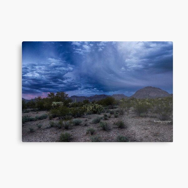 Tucson desert sunset #2 - winter 2017 Metal Print