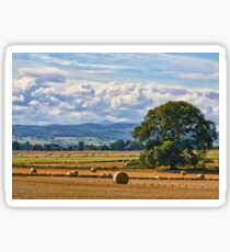 Rural Nature Countryside Scenic Landscape Photography Sticker
