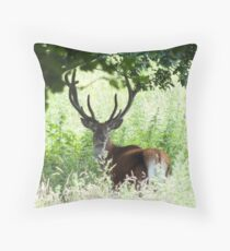 The Young Pretender - Red Deer Stag Throw Pillow