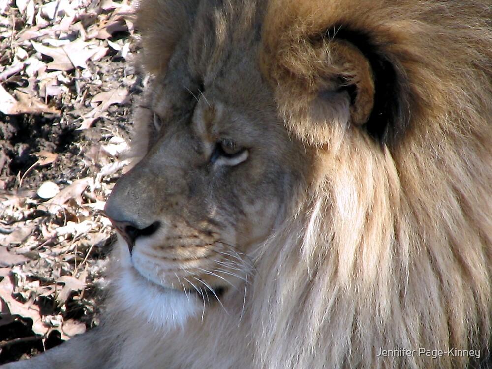 Lordly Lion by Jennifer Page-Kinney