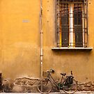 Bologna Bicycle by Rae Tucker
